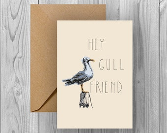 Hey Gull Friend