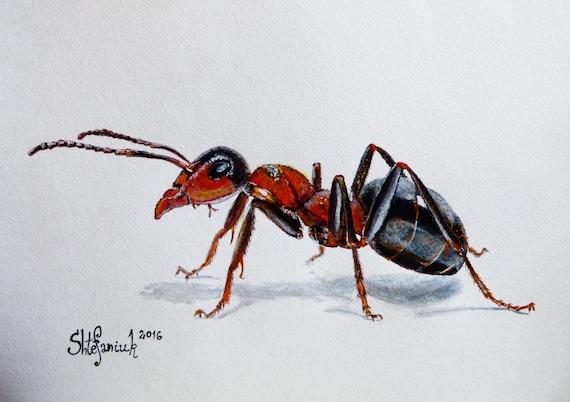 Αποτέλεσμα εικόνας για ant painting