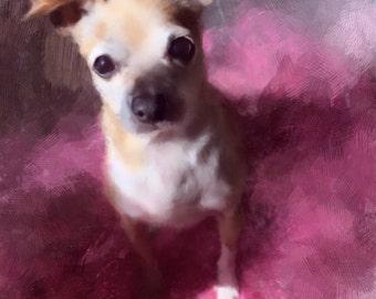 custom digital painting - PET PORTRAIT
