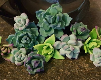 Set of 17 - Multi-size Succulent Wedding Cake Topper Set