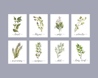 Herb Printable Set of 8 / Rustic Kitchen Decor / Watercolor Botanical Herb Prints / Instant Download Herb Print Set of 8 / 5x7