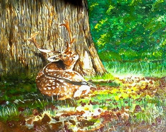 """Stag """"At Rest"""" Oil."""