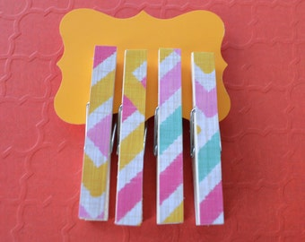 Pink and blue striped magnetic clothespin
