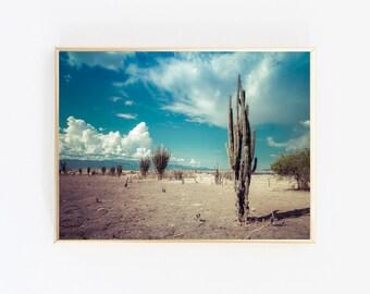 Desert Print, Cactus Photography, Desert Art, Cactus Print, Desert Landscape, Botanical Print, Cactus Wall Art, Instant Download
