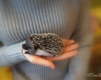 Needle felted hedgehog - Miniature sculpture Handmade Felt toy - hedgehog as a gift.