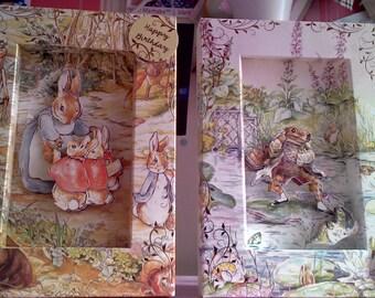 2 beatrix potter 3d framed cards