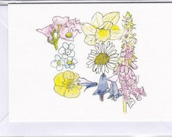 Wild Flowers,