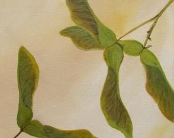 "Original ""Norway Maple Samaras"" square 8""x8"" acrylic canvas painting plant seed nature art"
