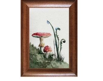 Amanita watercolor