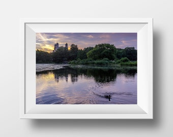 Central Park New York Photo Print Download