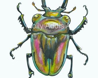 A5 Beetle Print