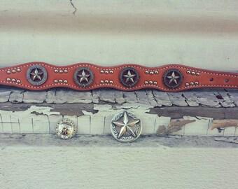 Star Concho Leather Dog Collar