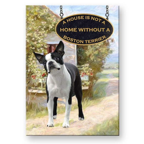 Boston Terrier a House is Not a Home Fridge Magnet No 1