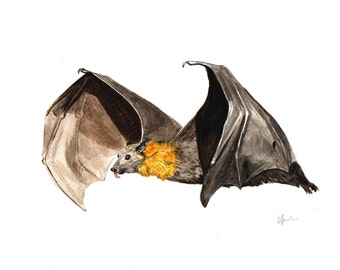 Fruit Bat Watercolour Painting- Original Handmade Art