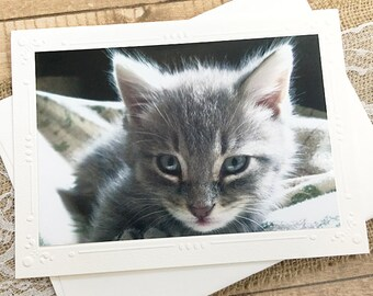 "Sweet & Innocent Grey Tabby Kitten Fine Art Photography Card, Rascal, Cat, Fluffy, Pet, Embossed Border, Birthday, Thinking of You - 7"" x 5"