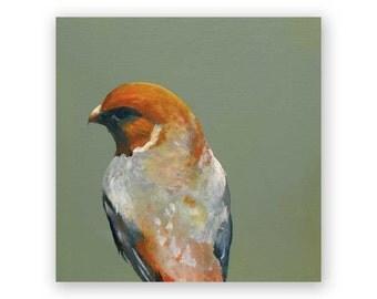 Orange Bird - 6 x 6 Wings on Wood Decor