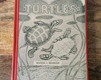Vintage Book on Turtles Ink Drawings Midcentury