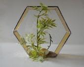 Stained Glass Geometric Planter, Hexagon, Honeycomb, Home Decor, Garden Art, Reclaimed Glass, Display Case, Air Plant, Terrarium, Diorama