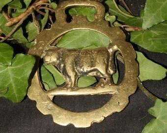 Vintage or Antique Bull Horse Brass - Taurus - Folk Magic, British, Pagan, Wisdom - Rare