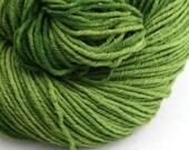 Hand Dyed Aran weight mini Empire Rambouillet Wool 213 yds 4oz Lichen