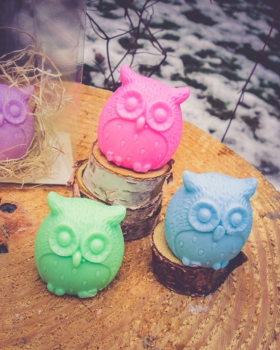 Owl Soap Owl Party Favor Owl Birthday Its A Hoot Owl