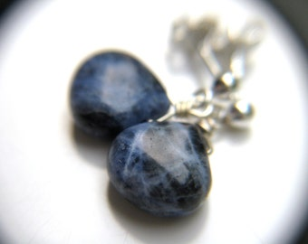 Dark Blue Earrings . Small Teardrop Earrings . Blue Gemstone Earrings . Sodalite Earrings . Dark Blue Drop Earrings - Cascada Collection