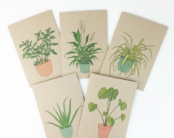 Houseplant cards (individual or set) house plant / pot plants illustrated eco friendly card - recycled kraft