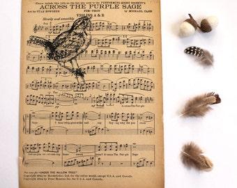 Sale Wren Gocco Print Across The Purple Sage Screen Print on Vintage Music