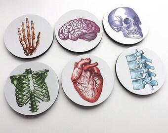 Nursing Graduation Medical School gift Coasters anatomy med student physician assistant nurse practitioner for him biology cardiology grey's
