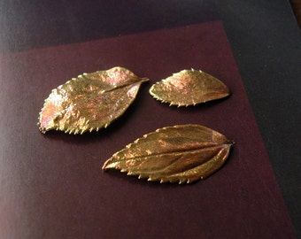 3 Copper Dipped Real Leaves, for Jewelry, Fall Decor, Art Supply