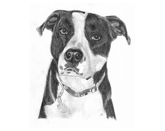Pet Portrait, Custom Dog art, Sketch From Photo, Pencil Sketch, Personalized Pet Art, Pet Memorial, Dog Drawing, DIY Printable, Inklets
