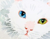Cat Art, White Cat Watercolor PRINT - Holiday gift Beautiful cat eye art white aqua emerald - 8 x 10 Cat
