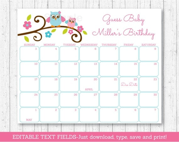 owl baby due date calendar owl baby shower pink owl baby shower
