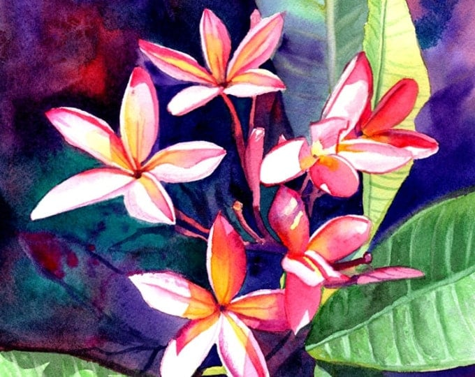 Plumeria Original Art,  Tropical Flower Paintings, Frangipani Art, Kauai Fine Art, Original Watercolors,  Hawaiian Flowers, Hawaii Decor