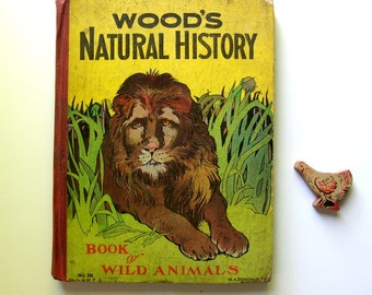 Antique Wood's Natural History Book of Wild Animals