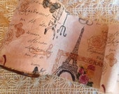 NEW DESIGN - Distressed Pink French Trim- Eiffel Tower - Butterfly's - Birdcages - Mannequin - French Script -