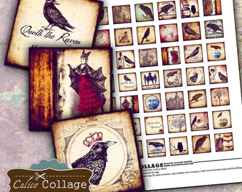 Raven Collage Sheet - Digital Collage Sheet 1x1 inch size images Printable Download for pendants magnets jewelry journaling