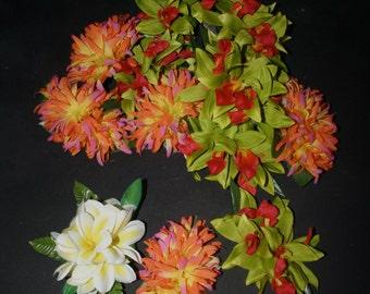 Hula Hairclips ~ A Bakerʻs Dozen