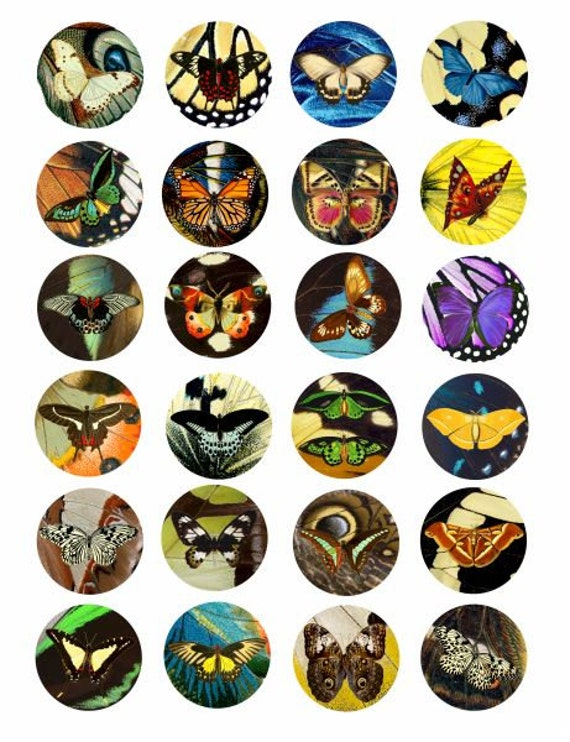 butterflies butterfly wing patterns clip art collage sheet 1.5 INCH circles digital download graphics images scrapbooking crafts