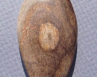 Arizona Petrified Wood Cabochon-63 Cts.