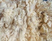 Super Fine 18.6 Micron Merino Raw Fleece White Spinning Knitting Crochet