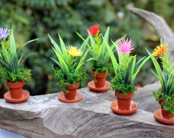 Save25% Miniature potted plants-Hand made Fairy Garden decor-Dollhouse plants-