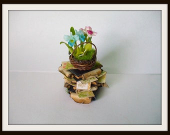 dollhouse Witch miniatures herb stack book ooak wizard herb garden