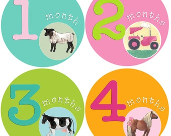 Baby Girl 1st Year Stickers Baby Months Stickers Girl Milestones Month Baby stickers Country Farm Animals