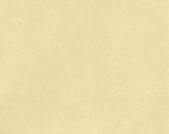 8 1/2 x 11 - American Crafts - Smooth - Butter Cardstock