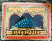 Vintage Canning Label Placemats / 4 / New / Metropolitan Museum of Art / Fruit canning labels