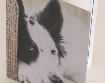 Colored Pencil Nora Dog Blank Notecards, Note Cards, 5 cards