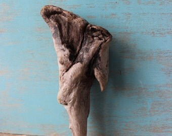 Natural Driftwood Sculpture , Beautiful Garden Decoration and Beach house Decor