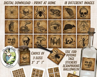 Digital Halloween Potion Label Printable Download Squares Vintage Style Clip Art 1 2 3 Inch Collage Sheet Scrapbook Tag Jewelry Inchies