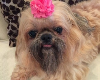 Hot Pink Satin and Tulle Flower Dog Puppy Bow Barrette